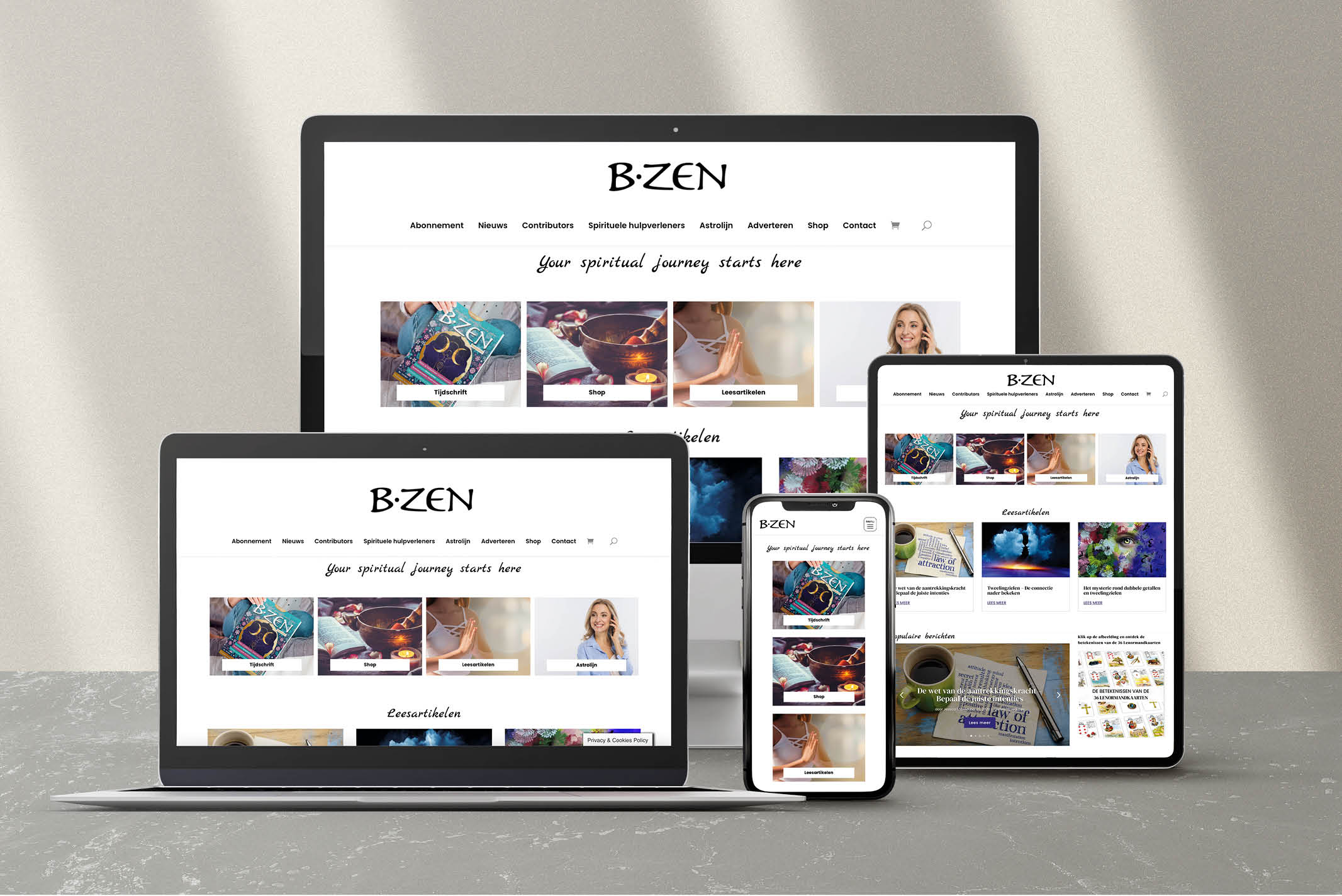 b-zen-magazine-concept-website-studio-alterego